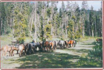 James Jennifer Georgina – Postcard stamped on Wednesday, September 22, 1999
